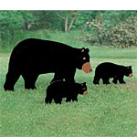 Plan-Lifesize Yard Bears (lifesize)