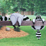 Plan-Raccoon Rail Pets (up to 26