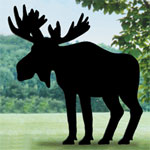 Plan-Moose Shadow (7' high)