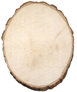 "Basswood Round - Medium (approx 7"" to 9"")"