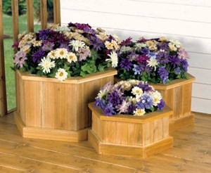 "Plan-Planter Trio (9""-15""h x 17""-23""w)"