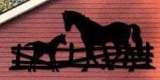 "Plan-Horse And Colt Shadow (96"" long)"