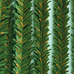 Pine Stems (10pc) - 12