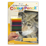 Colour Pencil by Numbers - Wolf