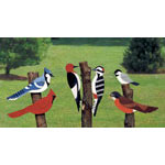 Plan-Giant Yard Birds (23