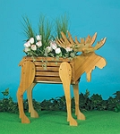 Plan-Moose Planter (38