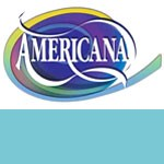Shoreline Americana Paint - 2oz