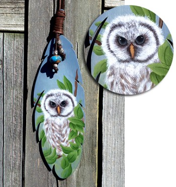 Baby Barred Owl Packet by Cindy Dawson