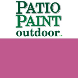 Patio Paint Fuchsia - 2oz