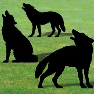 "Plan-Wolf Pack Shadows (36"" high)"