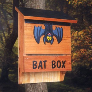 "Plan-Bat House (17"" wide)"